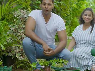 Kushlani Pregnant